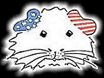 US-Teddy-Zeichnung